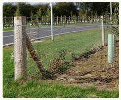 PRODUCTS: ELECTRIC FENCE CHARGERS (GENERAL)
